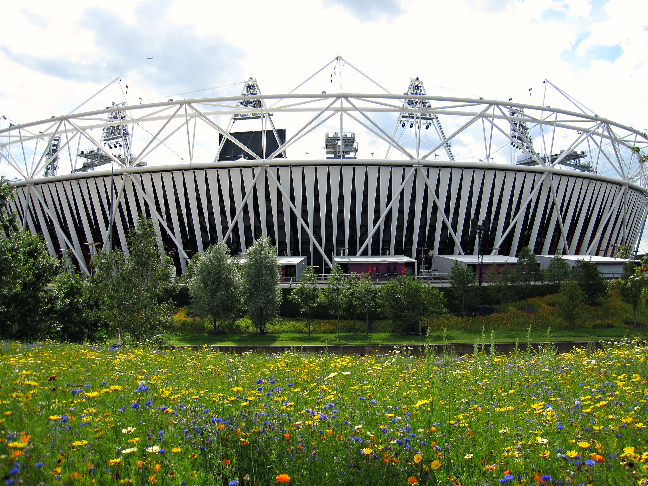 Insights With Interns: The London Olympics | helloworld com